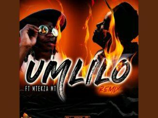DistroKid Umlilo (Remix) ft. Mtekza MT