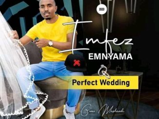 Imfezi Emnyama - Perfect Wedding Album