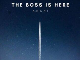 DJ Nhani - Tilili Amapiano