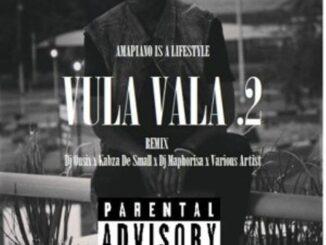 DJ Shaka Vula Vala