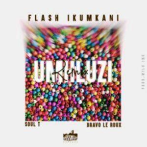 Flash iKumkani mhluzi Remix