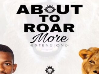 Mr Dlali Number – About To Roar More Extensions EP