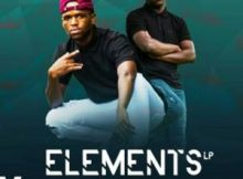 Assertive Fam – Elements LP