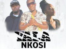 Dankie Goodness – Yala Nkosi (feat. Anande)