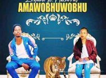 Zodumo - Amawobhuwobhu