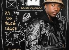 Andile Mpisane – It's Too Much Sauce