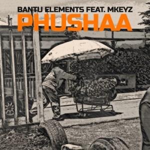 Bantu Elements – Pushaa Ft. Mkeyz