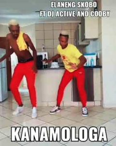 Elaneng Skobo ft DJ Active - Kanamologa