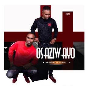 Osaziwayo Imisebenzi Ka Shenge Album