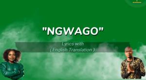 Prince Benza ft Makhadzi – Ngwago Lyrics (with English Translation)