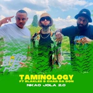 Taminology Nkao Jola 2.0 ft Chad Da Don