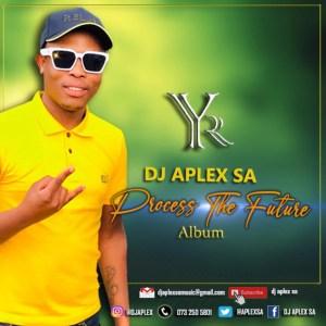 DJ Aplex – Process the Future (Album)