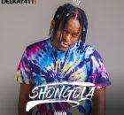 Deekay 411 - Shongola EP