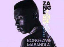 Bongeziwe Mabandla Zange